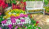Instant Flower Bed Roll-Out Seed Mats (3-Pack)