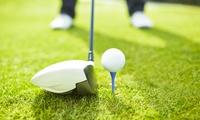 DGV-Golf-Mitgliedschaft für das Jahr 2018 bei Hamelner Golfclub e.V. Schloss Schwöbber (bis zu 80% sparen*)