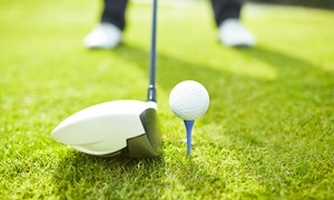 Hamelner Golfclub e.V. Schloss Schwöbber: DGV-Golf-Mitgliedschaft für das Jahr 2018 bei Hamelner Golfclub e.V. Schloss Schwöbber (bis zu 75% sparen*)