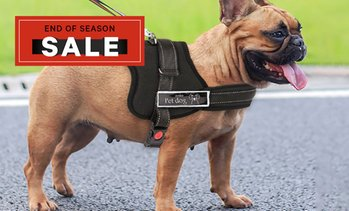 Adjustable Dog Support Harness