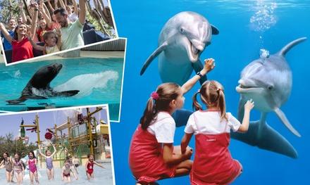 Tickets voor Boudewijn Seapark: beleef een dolfijne dag in Brugge