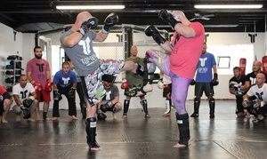 Top Tier: One-Month of MMA Classes for Adults at Top Tier (Up to 54% Off)