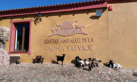 1 entrada de niño con actividad a elegir o entrada de adulto desde 7,95 € en Centro Andaluz de la Fauna Salvaje