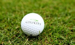 DGM Deutsche Golf Marketing GmbH: Internat. anerkannte Greenfee-Mitgliedschaft für das Jahr 2017 bei DGM Deutsche Golf Marketing GmbH (bis zu 62% sparen*)