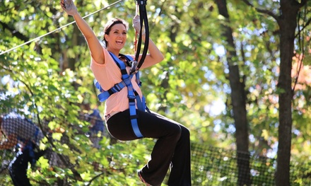 Climbing and Ziplining for One, Two, Four or Six at The Adventure Park at Discovery Museum (Up to 27% Off)