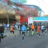 Up to 19% Off Entry in Seattle Marathon or Half Marathon