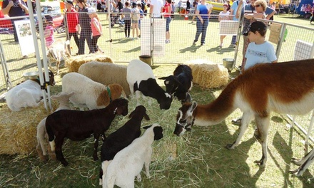 Entry for Child Aged 25 $5, 616 $6, or Family Pass $20 to White Ridge Farm Up to $38 Value