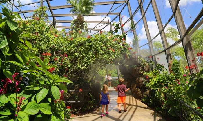 Butterfly World - Coconut Creek: $35 for Admission to Butterfly Gardens and Bird Aviaries for Two at Butterfly World (Up to $53.90 Value)