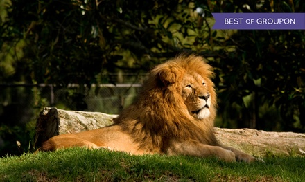 Bristol: Standard or Family Room for up to Four with Breakfast and Zoo at Best Western Bristol North The Gables Hotel