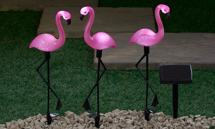 Solar Light Up Flamingos Groupon