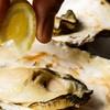 神奈川県/関内 ≪牡蠣など120分食べ放題+(焼き牡蠣3個 or 生牡蠣3個)≫