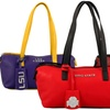 NCAA Small Carry-All Purse with Beveled School Name
