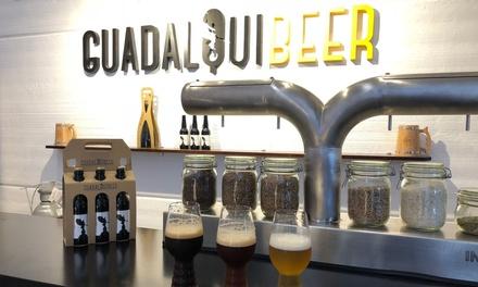 Visita guiada a la fábrica de cervezas con cata para hasta 6 personas en Guadalquibeer