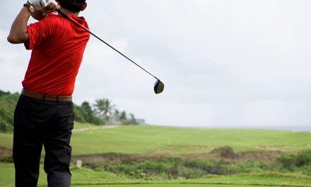 One or Two 60-Minute Golf Lessons from Gary Monisteri (Up to 51% Off)