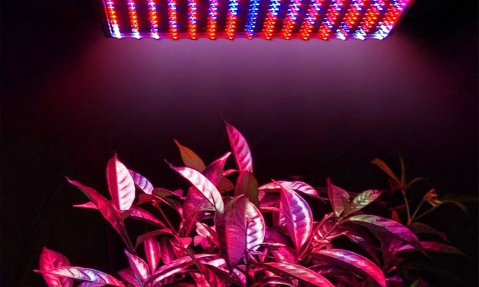 full spectrum 225 led plant grow light set livingsocial. Black Bedroom Furniture Sets. Home Design Ideas