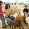 25% Off Zoo - Petting