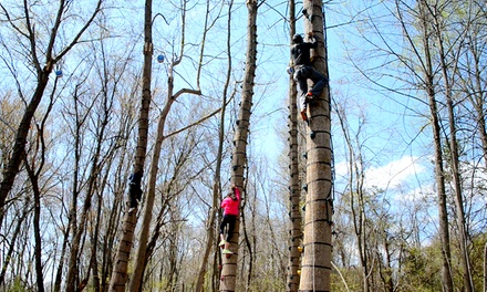$49 for a 6-Punch Monkey Grove Tree-Climbing Pass at The Adventure Park at Sandy Spring ($114 Value)