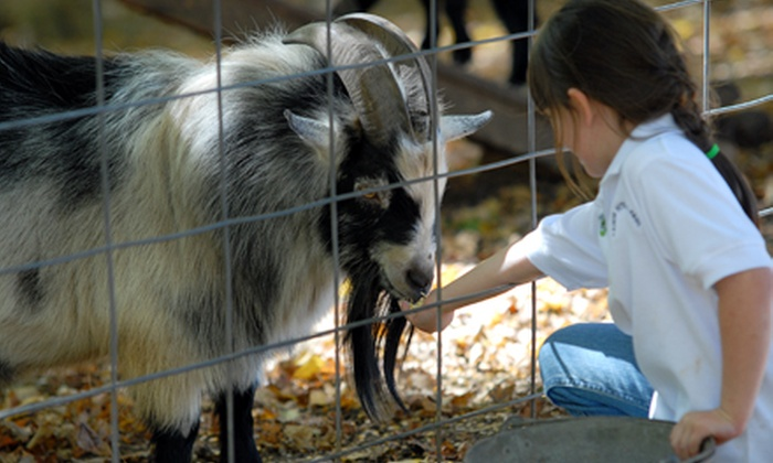 Christian Way Farm, LLC - Hopkinsville: 18 Holes of Mini Golf and Petting-Farm Admission for Two, Four, or Six at Christian Way Farm, LLC (Up to 58% Off)