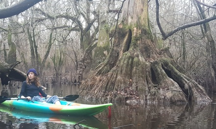 Honey Island Swamp Tours Groupon