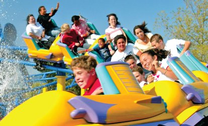 image for $14 for Duke's Duo Pass to Castle Park ($16.99 Value)