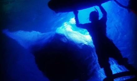 Manta Ray Night Snorkel for One or Two from Hawaiian Coastline Adventures (Up to 49% Off)