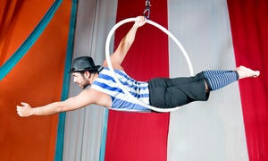 Gerry Cottle's WOW Circus: Gerry Cottle's WOW Circus Entry, 5 - 30 October at Multiple Locations (Up to 50% Off)