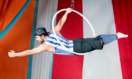 John Lawson's Circus, 15 July 4 August, Six Locations