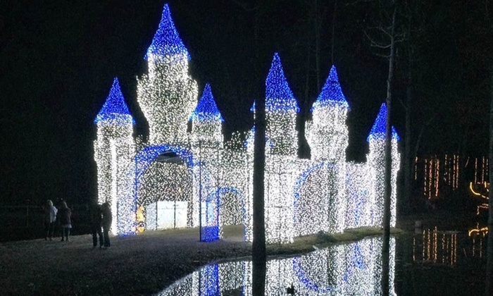 Admission for Two, Four, or Six with Optional Fast Pass at Lights of the South (Up to 38% Off)