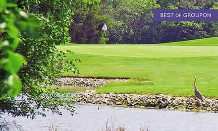 18-Hole Round of Golf for 2 or 4 with Cart Rental at Sunset Valley Golf Course in Highland Park (Up to 51% Off)