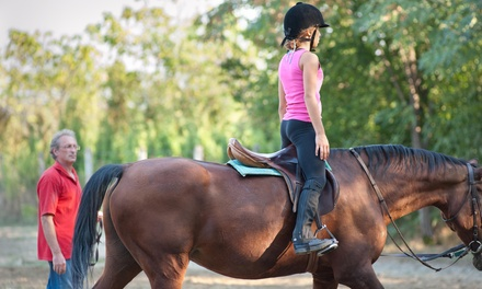 Two Horseback-Riding Lessons at Royal Oaks Equestrian Center formerly Belle Terre Farm (65% Off)
