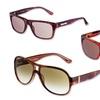 Ferragamo Men's and Women's Sunglasses