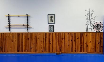 1 o 3 meses clases artes marciales a elegir entre varias disciplinas para adultos o niños desde 12,90€ en Dojo Dento Ryu