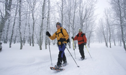 Half-Day of Snowshoeing for Three or Six People at Evergreen Wilderness Guides (Up to 42% Off)