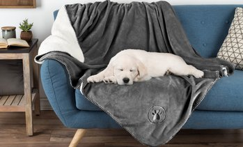 "Petmaker Waterproof 50"" x 60"" Soft Plush Pet Throw"