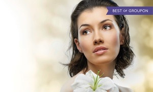 Beverly Hills Day Spa: One Facial or Chemical Peel at Beverly Hills Day Spa (51% Off)