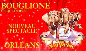 Cirque d'hiver Bouglione: 1 place pour enfant ou adulte, catégorie et date au choix pour la Tournée 2017 du cirque d'hiver Bouglionedès 10 €