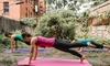 Group or Individual Pilates Classes from My Brooklyn Pilates