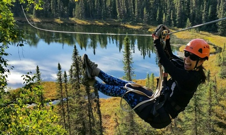 Three-Hour Ziplining Canopy Tour for One, Two, Four, or Six from Denali Zipline Tours (Up to 15% Off)