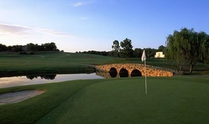 87% Off VIP Golf Pass at Tour 18 Golf Course