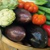 50% Off Local, Organic, Seasonal Produce