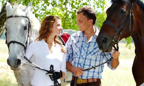 Paseo romántico a caballo por Sierra Morena con copa de rioja y aperitivo para 2 o 4 desde 24,95 € en Villa de Córdoba Oferta en Groupon