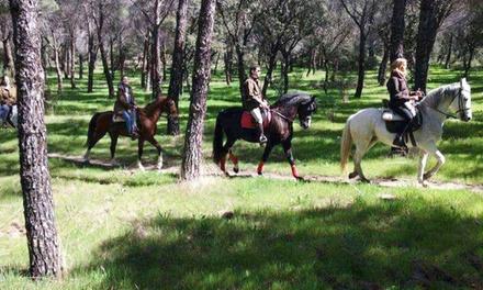 Paseo a caballo para 2 personas en Dehesa del Pardo (con 37% de descuento)