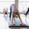 Up to 67% Off Yoga Classes at Vital Life Center