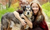 Animal and Pet Online Courses