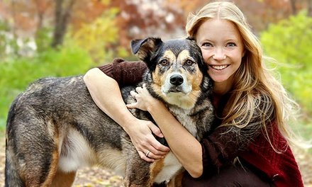 for Accredited Animal Care and Physical Therapy Online Courses Don't Pay up to $525