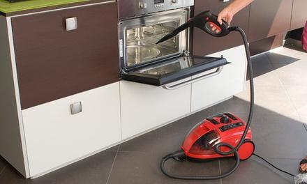 Limpiador a vapor con plancha profesional por 109,99 € (88% de descuento)