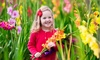 Pre-Order: Giant Gladiolus Bulbs (40-, 80-, or 200-Pack with Planter)