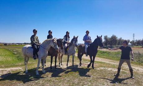 Paseo a caballo para 2 o 4 personas con refrescos y snack desde 24,95 € en Centro Hípico Arco de Cubas Oferta en Groupon