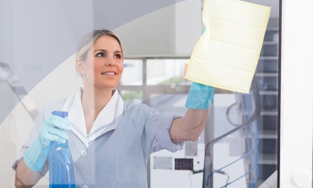 $75 for Interior-and-Exterior Window Cleaning for Up to 20 Windows from Royalty Cleaning ($250 Value)