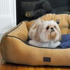 Crown-Embroidered Royal Bolster Pet Bed